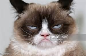 Grumpy Cat As Grumpy Santa Quot I Was Santa Once It Was Horri » Ideas Home Design