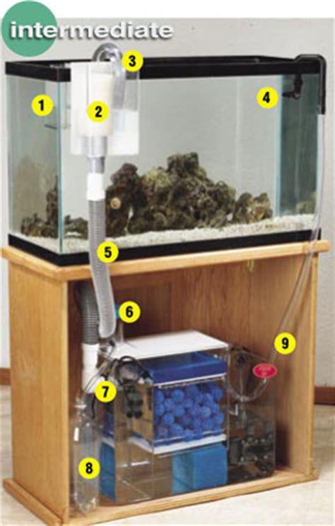 cara membuat filter aquarium simpel aquarium filter set up how to hook up a wet dry filter