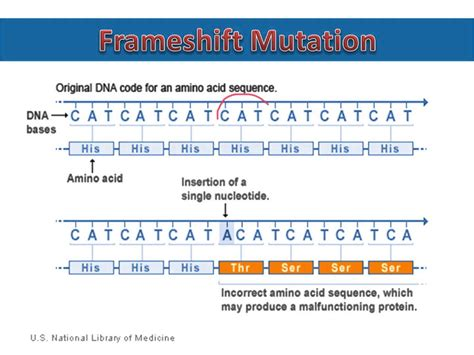 what is a frame frameshift mutations