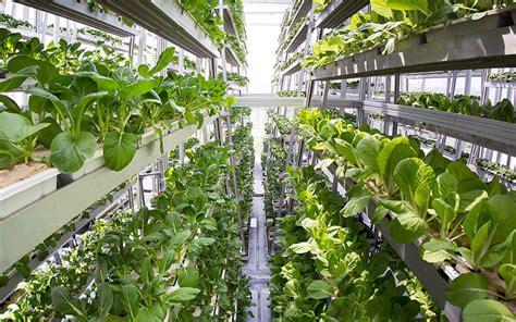 Vertical Garden Toronto The Future Of Condos Pt 3 Vertical Farming Signature