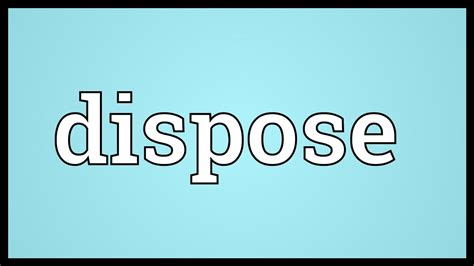 dispose meaning