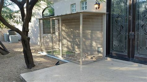 escapes from kennel best indestructible heavy duty escape proof kennel reviews on strongest pet