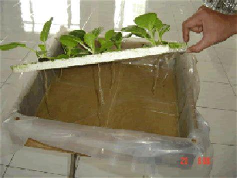 cara membuat hidroponik rakit apung cara membuat hidroponik rakit apung untuk skala rumah