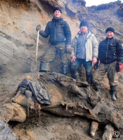 hutte en os de mammouth mammouth monnaies et detections le