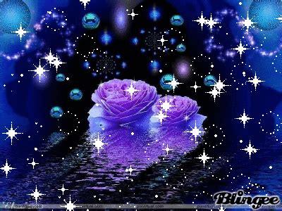 imagenes de rosas moradas wallpapers flores moradas picture 118523327 blingee com