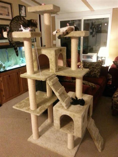 cat tower diy images  pinterest pets cat