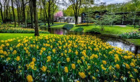 imagenes de jardines hermosas paisa buenos dias meme related keywords paisa buenos