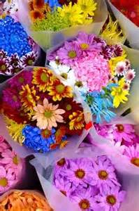 homemade flower food without bleach 44 best images about cut flowers cutting garden on