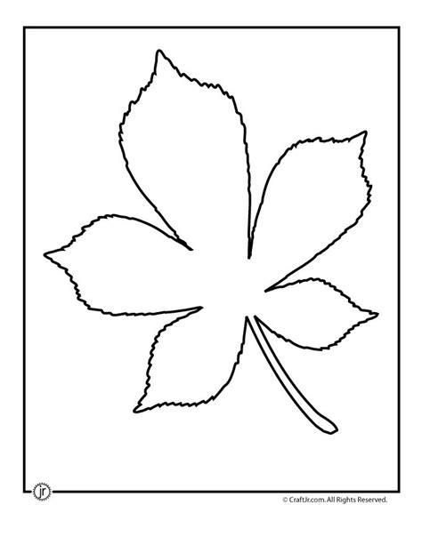 leaf template leaf template printables chestnut tree leaf pattern
