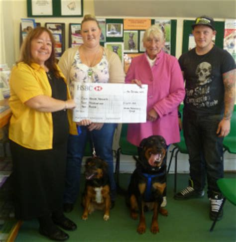 carr house dog rescue hull vet group launches christmas caign for carr house rescue centre haven