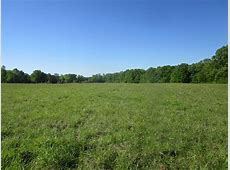 Ernie Martin Road : Ranch for Sale : Utica : Hinds County ... Utica Ms Land For Sale