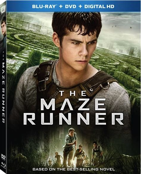 maze runner film company the maze runner comes to blu ray and dvd december 16