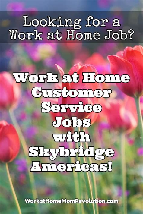 skybridge americas work at home customer service