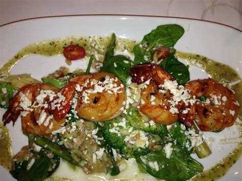 shrimp mediterranean brio shrimp mediterranian at brio southlake picture of brio