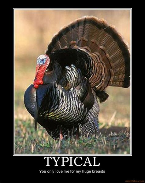Funny Turkey Memes - 11 turkey memes that will get you ready to blast those birds