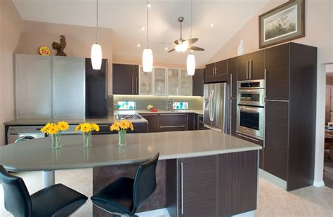 wenge kitchen cabinets wenge contemporary kitchen design contemporary kitchen