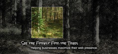 digital forest web design macon social media