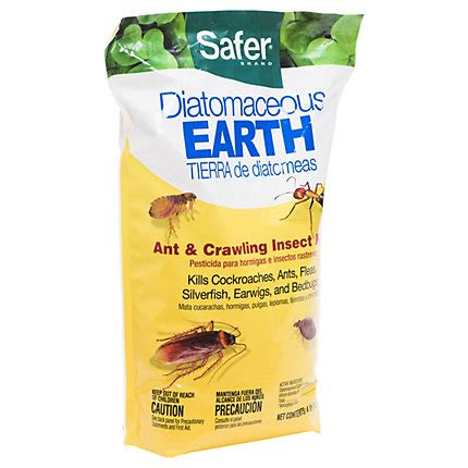 diatomaceous earth bed bugs review diatomaceous earth fleas carpet carpet review
