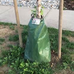 gator tree treegator test site