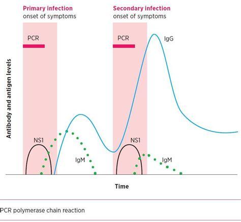 Dengue Igg Igm Rapid Test Orient non culture methods for detecting infection australian prescriber
