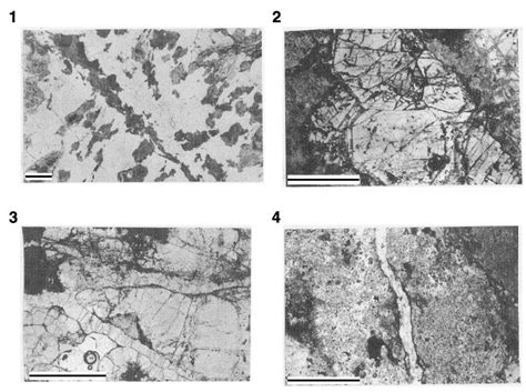 hibole in thin section plate p4 photomicrographs of various vein minerals in