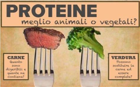 alimenti con le proteine proteine meglio animali o vegetali caldo sulle