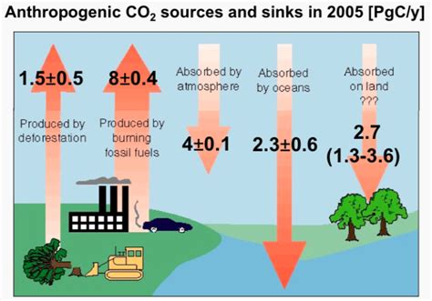 Sources And Sinks Of Carbon Dioxide anthropogenic carbon samar khatiwala
