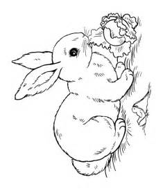 This Easter Rabbit Coloring Page Shows A Bunny Eating Lettuce  sketch template