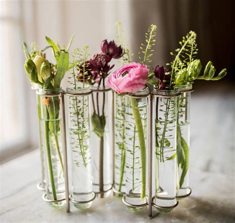 Test Vases by W Shaped Test Vase By Marquis Dawe Notonthehighstreet