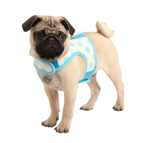 pug supplies pug supplies dress the clothes for your pets