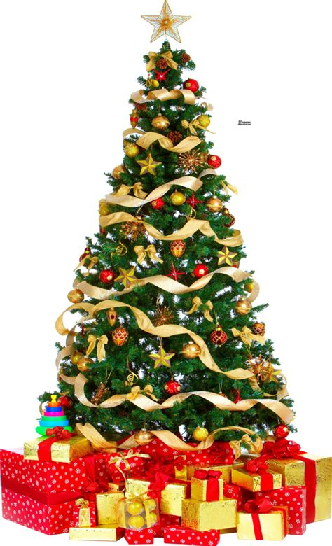 christmas tree image xmas tree png 3 hq large by iamszissz on deviantart