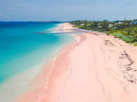 pink sand beach the most beautiful pink sand beaches in the world photos