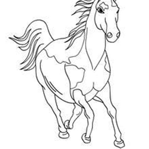 Paint Horse Coloring Pages