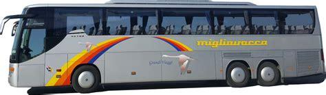 migliavaccabus home