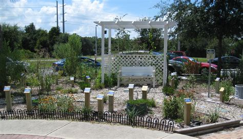 lowes winter garden fl quot tag you re it a butterfly playground quot frontpage