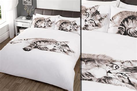 Wowcher Deal Wowcher 163 10 Instead Of 163 14 01 For A Cat Cat Bedding For