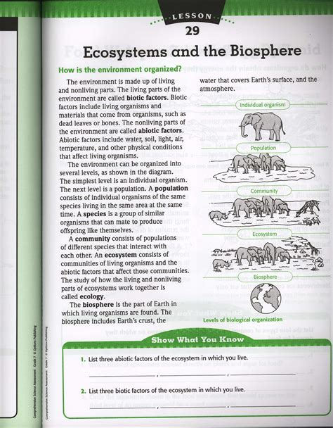 Ecology Worksheets by Levels Of Organization In An Ecosystem Worksheet The