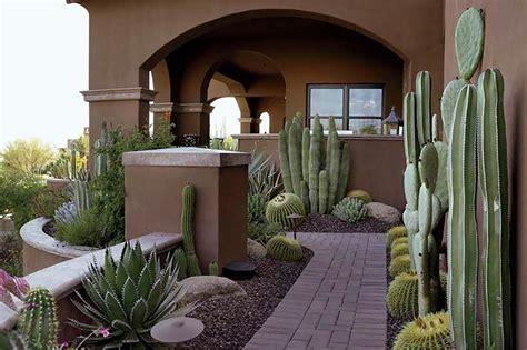 desert lush phoenix home garden