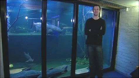 fish tank house cbbc newsround meet the man with a giant aquarium in his house