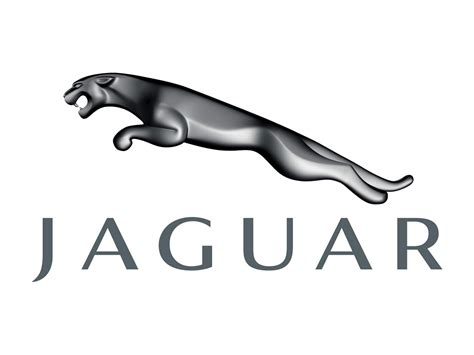 jaguar logo all car logos jaguar logo