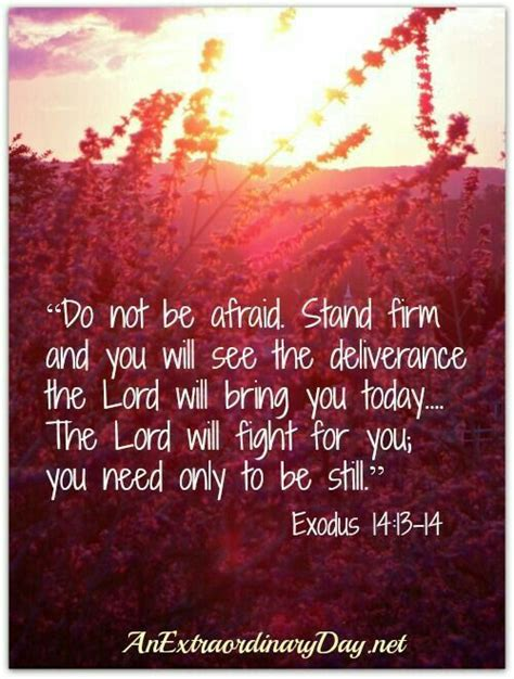 bible verses to bring comfort 25 best ideas about exodus 14 14 on pinterest