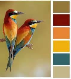 bird colors birds palette colors