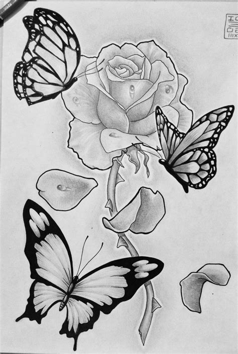 pencil sketches of butterflies on flowers best 25