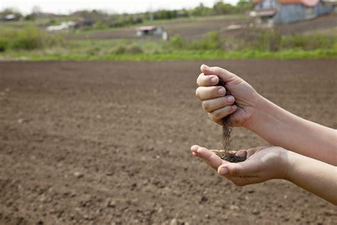 imagenes 3d en el suelo manejo de la sustentabilidad del suelo hortalizas part 3