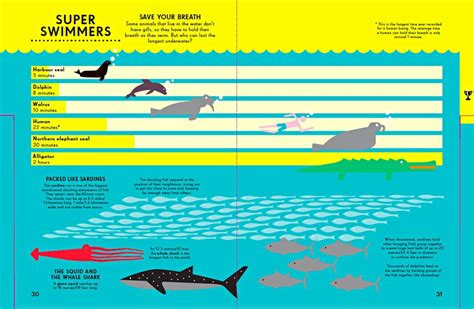 infographics animal kingdom infographics for children what they can learn from data visualisations news the guardian