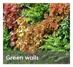 garden lk landscape designer sri lanka garden