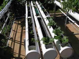 home hydroponics a closer view