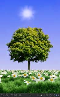 summer trees free android apps on google play