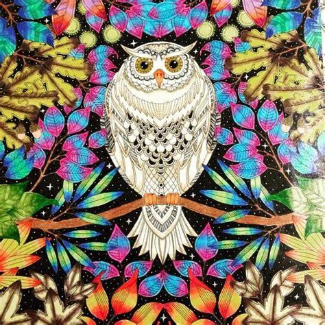 secret garden coloring book owl 94 best images about owl secret garden coruja jardim