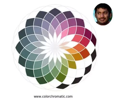 what colors look on skin what colour shirt looks on skinned indian